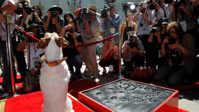 Uggie the dog, star of The Artist (2011), marks his retirement at a ceremony outside Grauman's Chinese Theatre, June 25 2012. Posing for photographers
