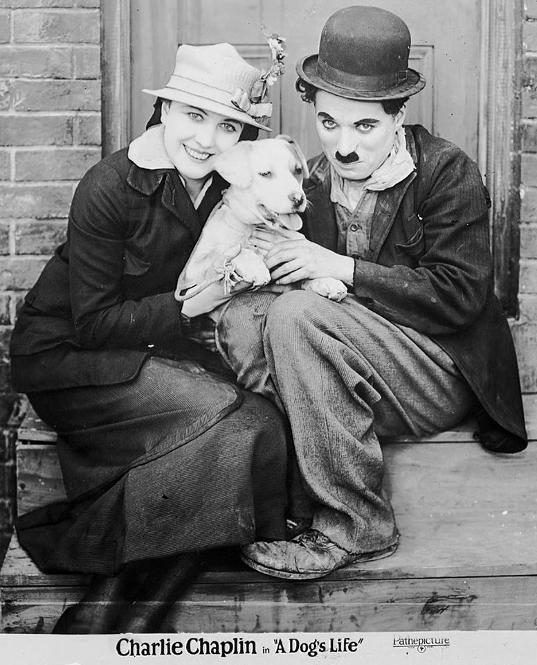 Edna Purviance, Scraps and Charlie Chaplin in A Dog's Life (1918), 1920s Pathé Pictures reissue photo