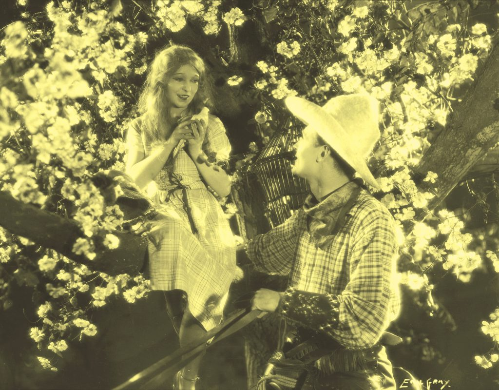 Annette Benson and Brian Aherne in Shooting Stars (1928), yellow