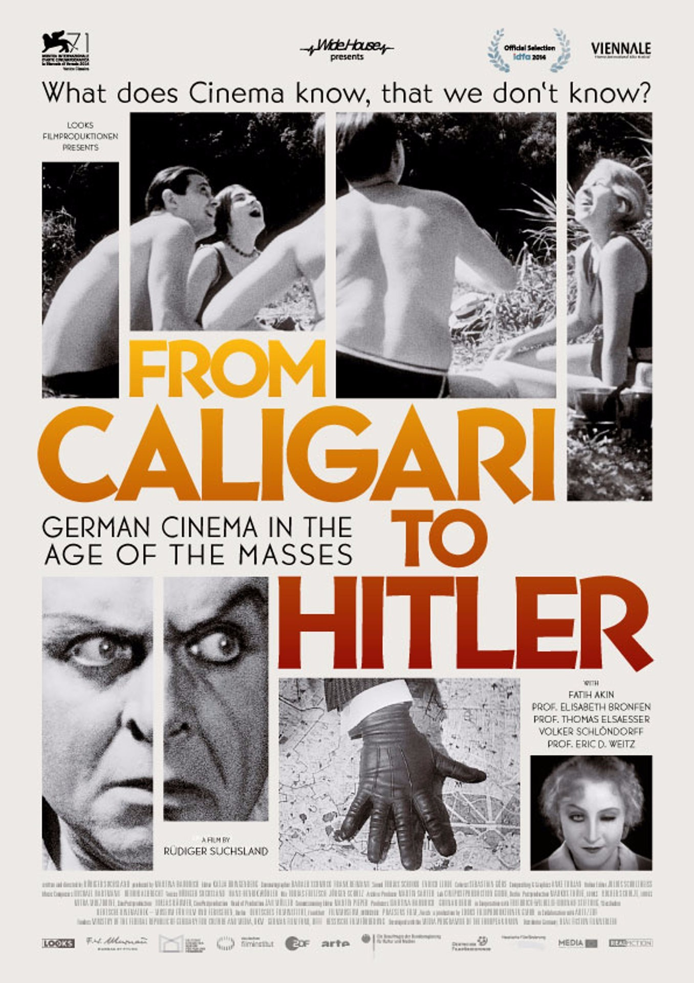 From Caligari to Hitler: German Cinema in the Age of the Masses (2014) poster